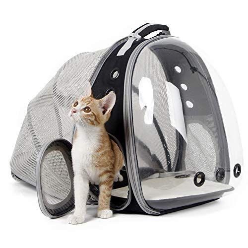 Halinfer back expandable cat backpack.